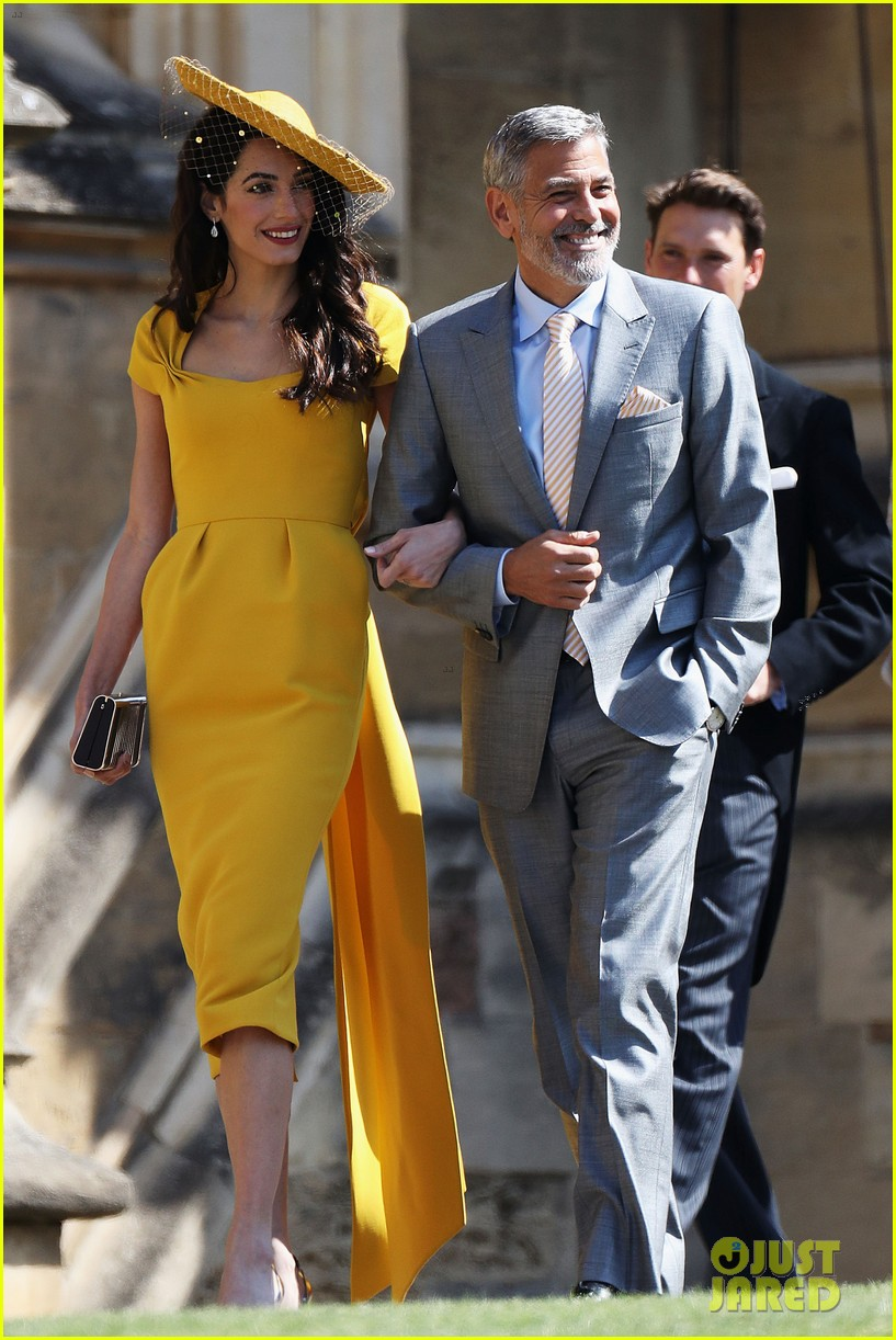 George and Amal Clooney Just Adopted the Cutest DogEver George and Amal Clooney Just Adopted the Cutest DogEver new picture