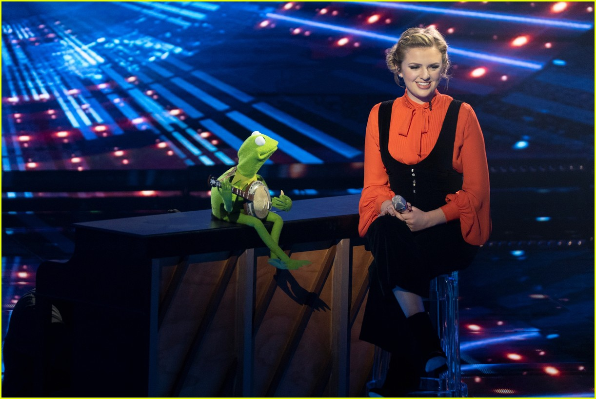 Image result for american idol kermit the frog