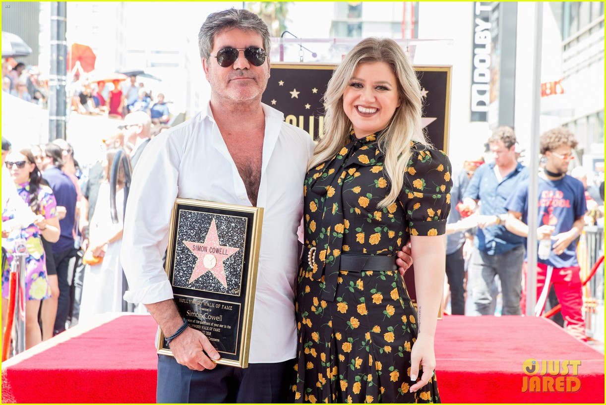 simon cowell american idol alums at hollywood walk of fame ceremony 024133345