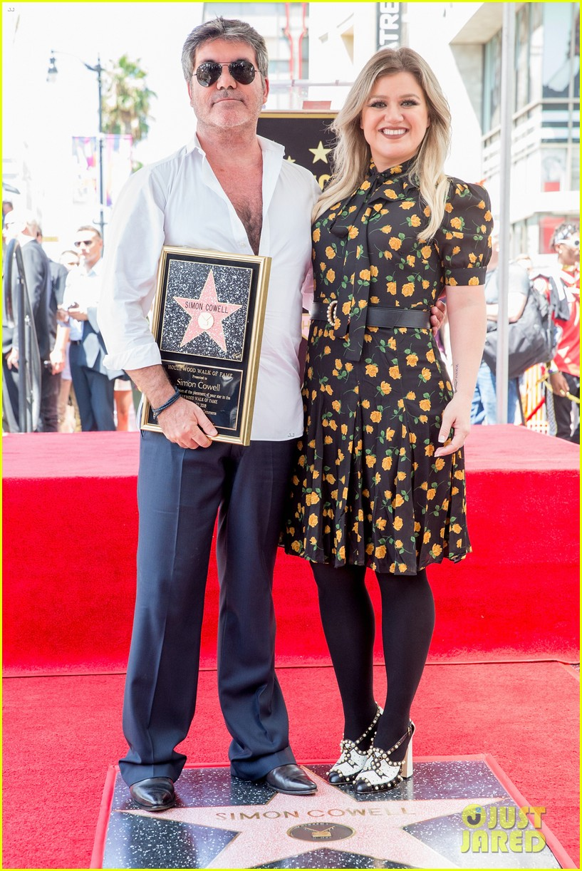 simon cowell american idol alums at hollywood walk of fame ceremony 074133350