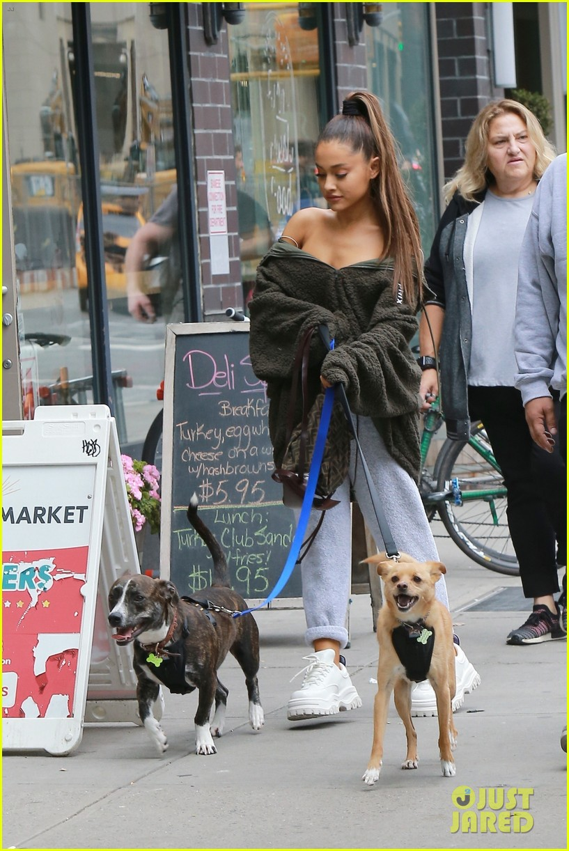 ariana grande walks her dogs in nyc 014152015