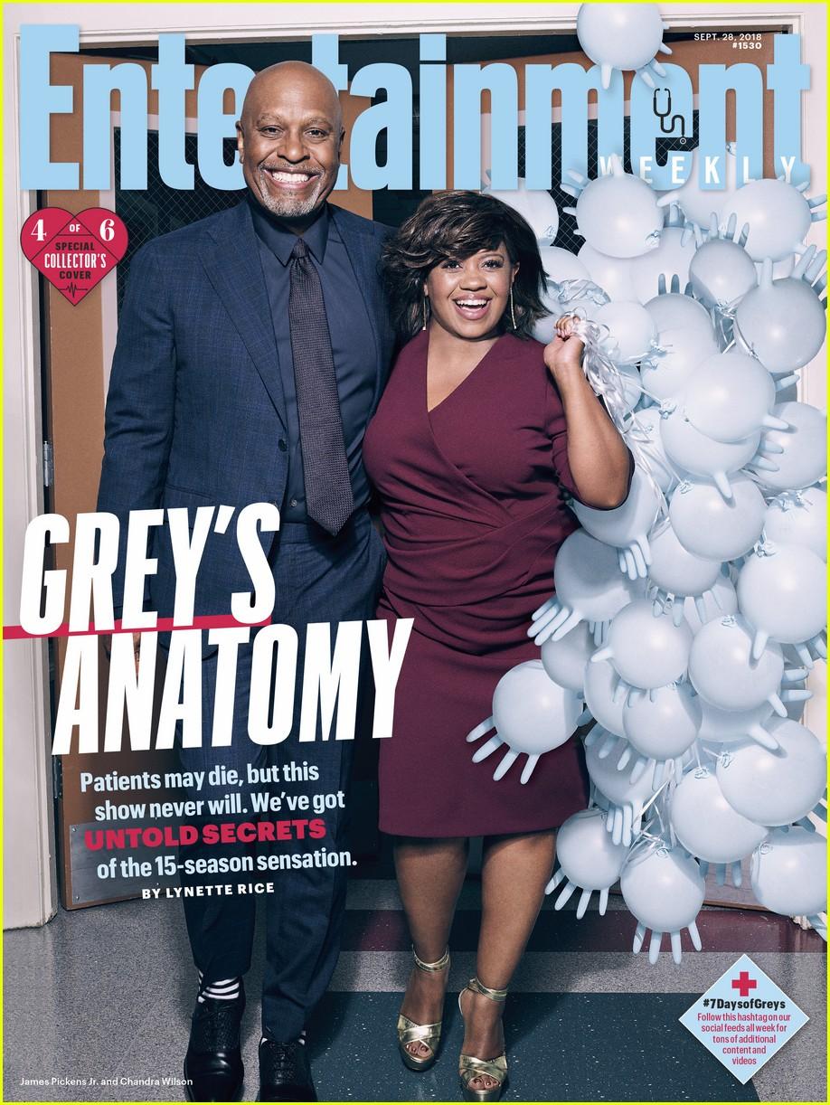 Grey\'s Anatomy\' Cast Celebrates 15 Seasons!: Photo 4150334 | Camilla ...