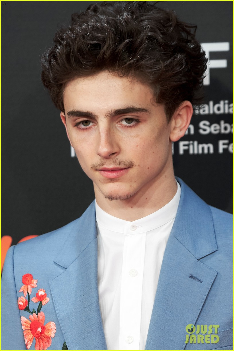 timothee chalamet beautiful boy premiere 044152914