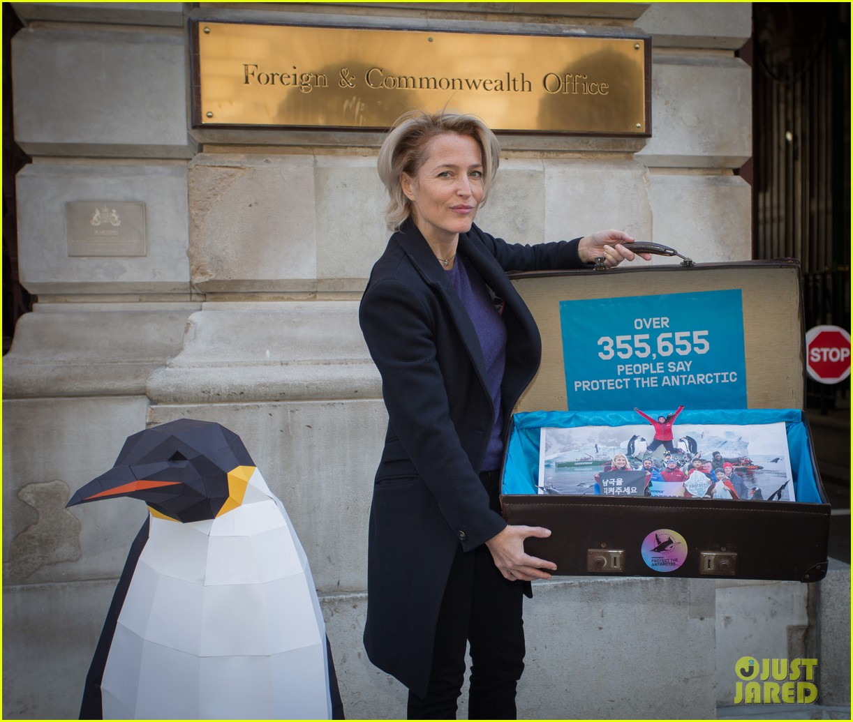 Gillian Anderson Delivers Antarctic Sanctuary Petition To