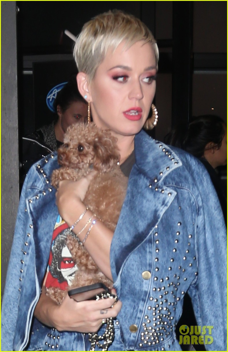 Katy Perry Cozies Up To Pooch Nugget While Stepping Out In Nyc