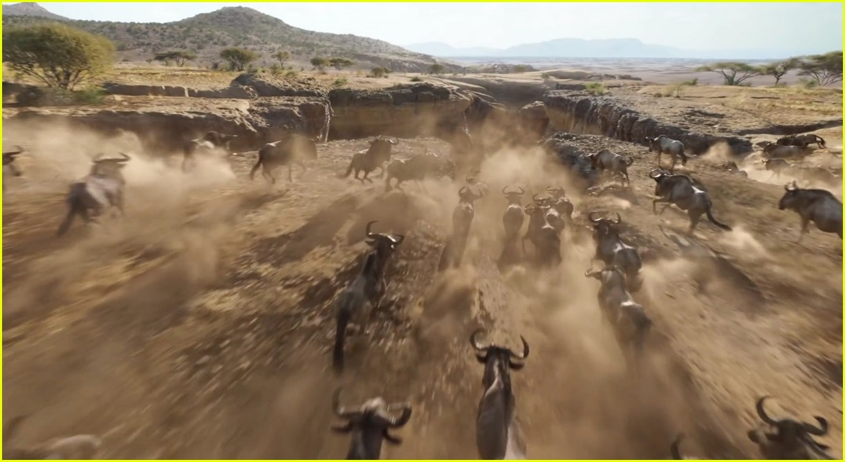 Disney S The Lion King Live Action Movie Debuts First