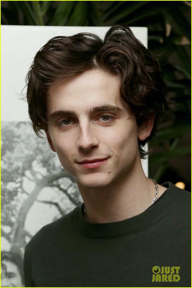 timothee chalamet attends beautiful boy reception with nic sheff 05