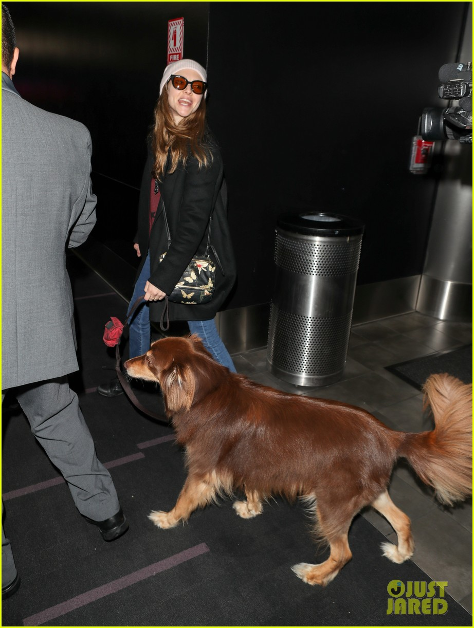 amanda seyfried travels from la to nyc with dog finn 02