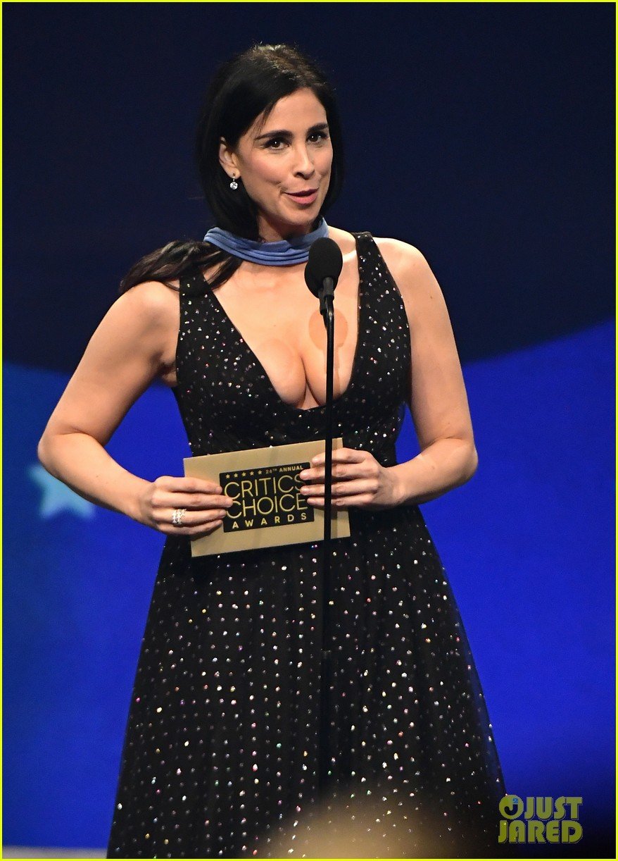 2019 Sarah Silverman nude (21 photo), Topless, Is a cute, Boobs, cleavage 2015