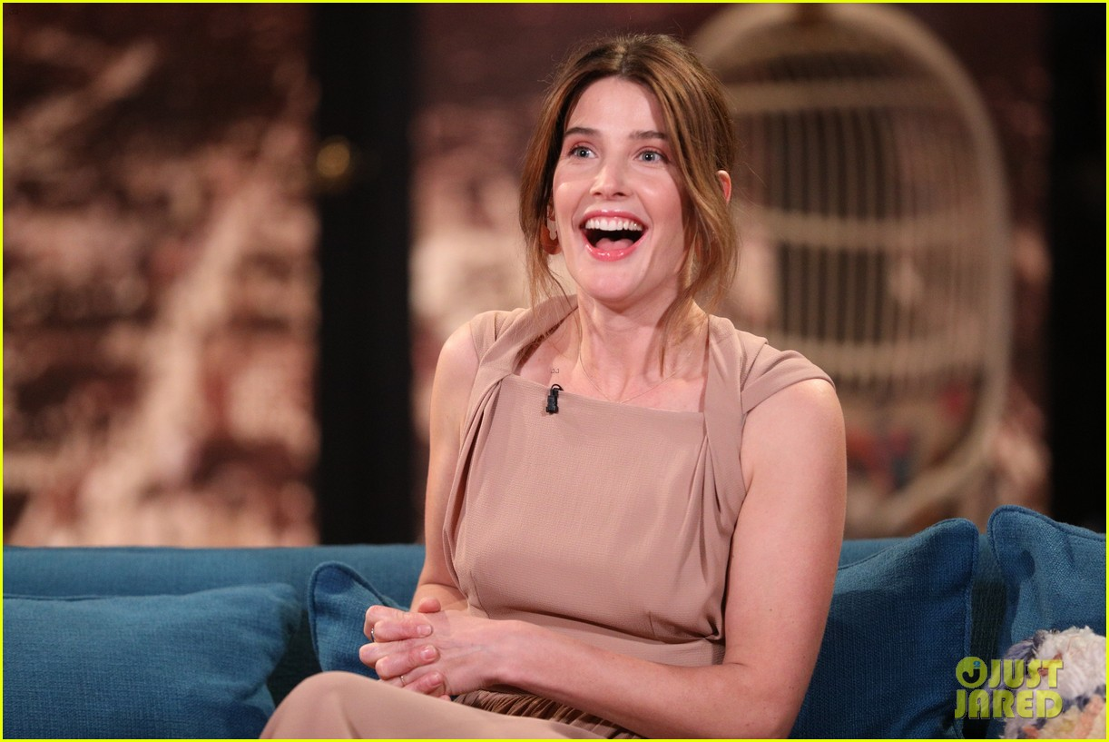 cobie smulders made zero impression on first meet with now hubby taran killam 03