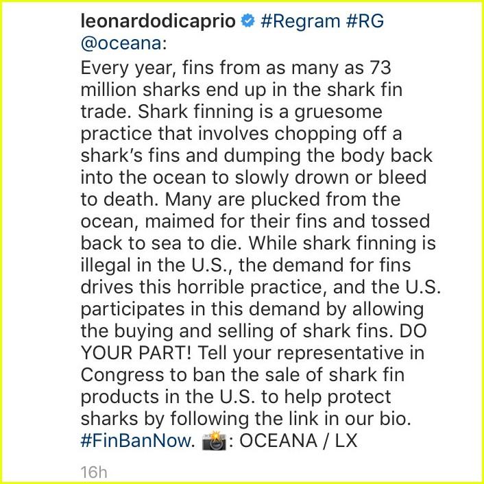 is lindsay lohan calling out leonardo dicaprio 01