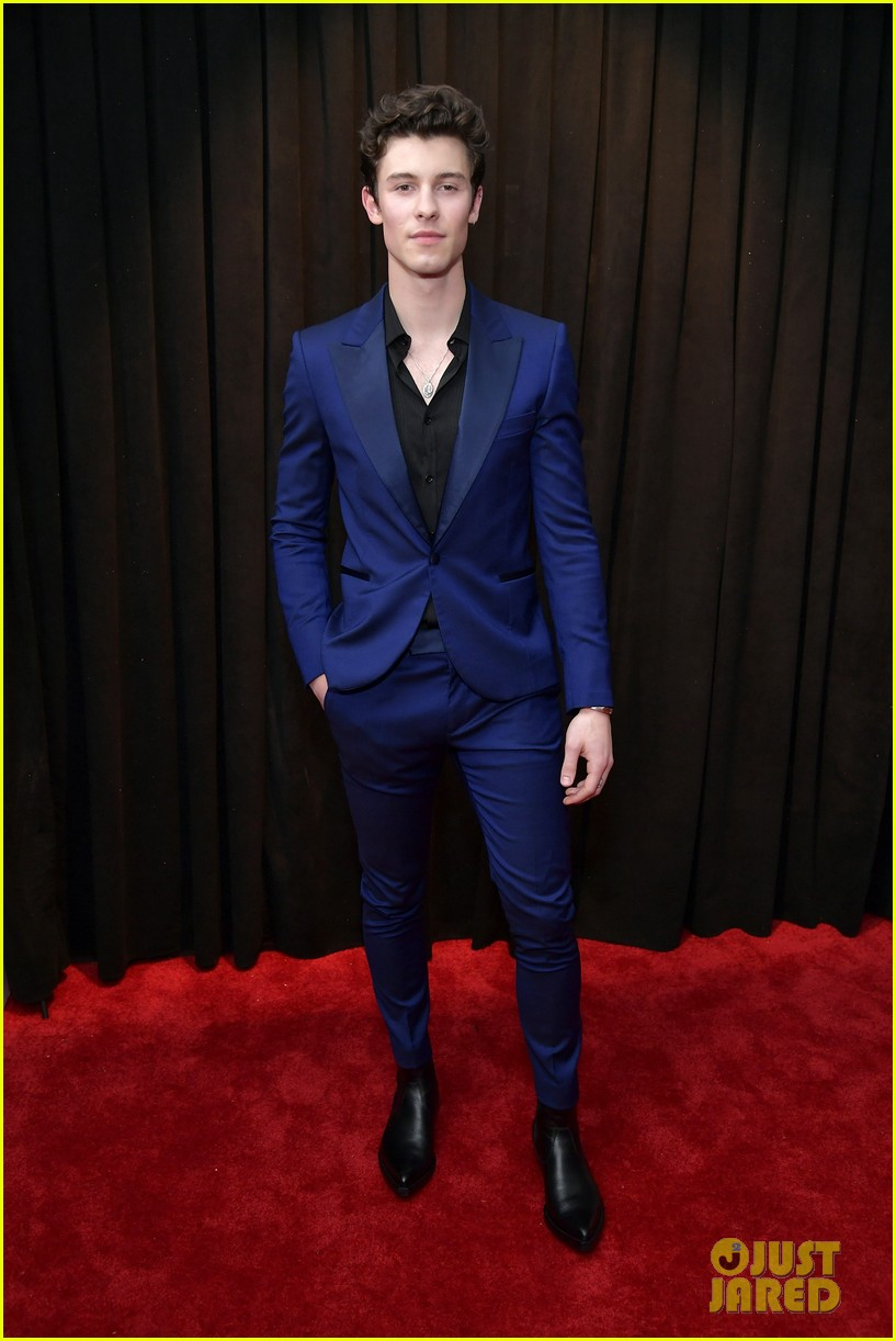 Shawn Mendes Looks Sharp In A Blue Suit At Grammys 2019