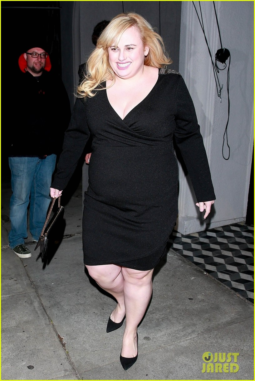 rebel wilson grabs dinner with friends at craigs 014241319