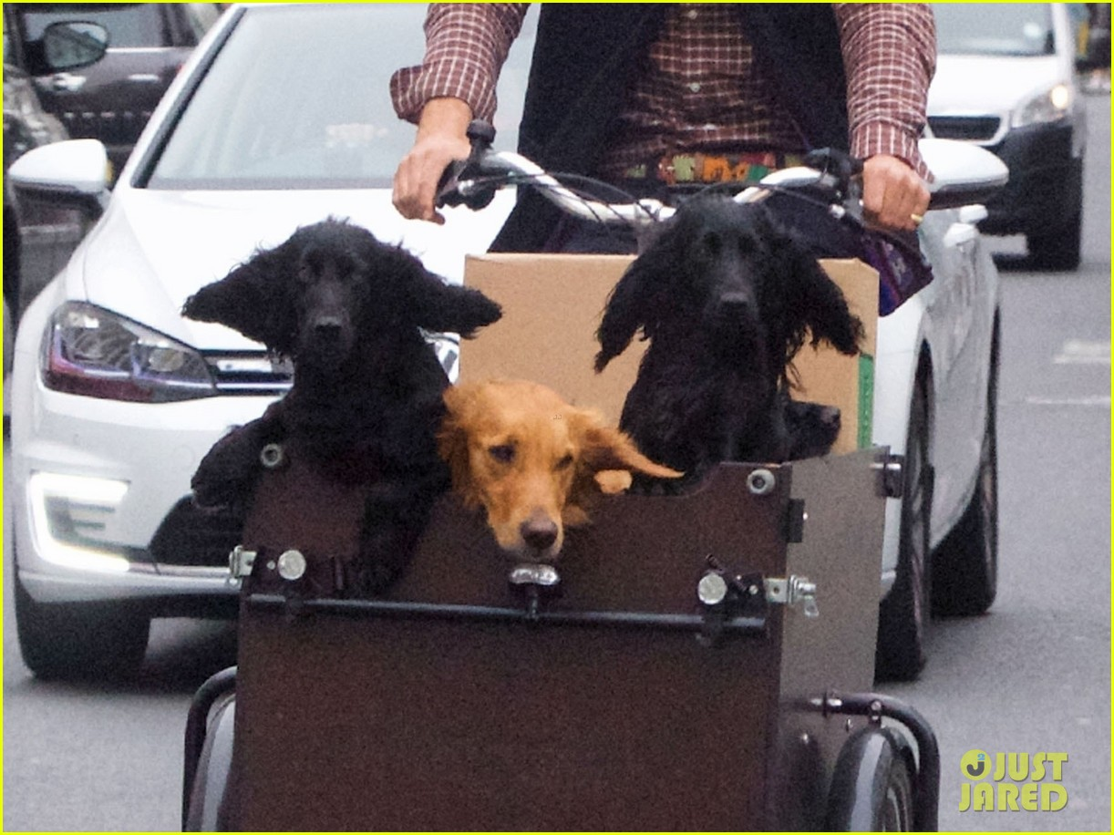 james middleton takes dogs for bike ride 05
