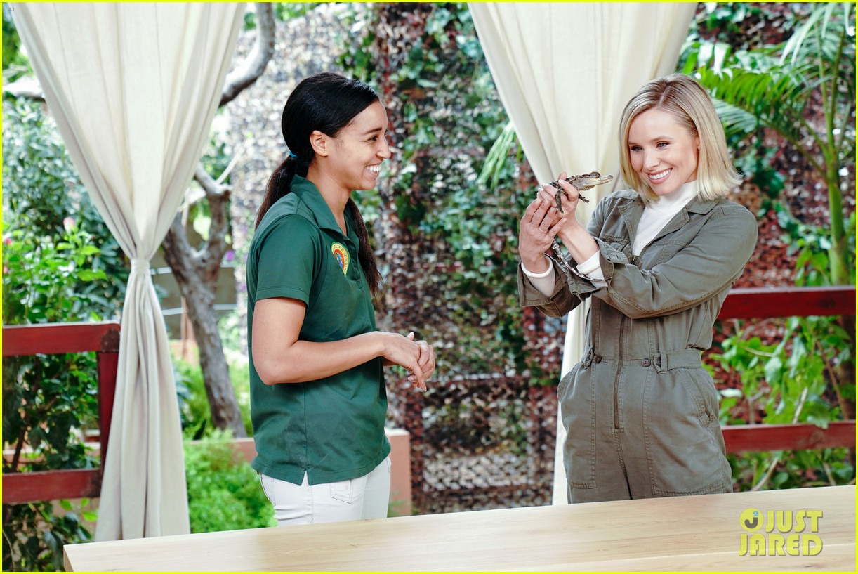 kristen bell reunites with a sloth on ellen series after her viral freak out 04