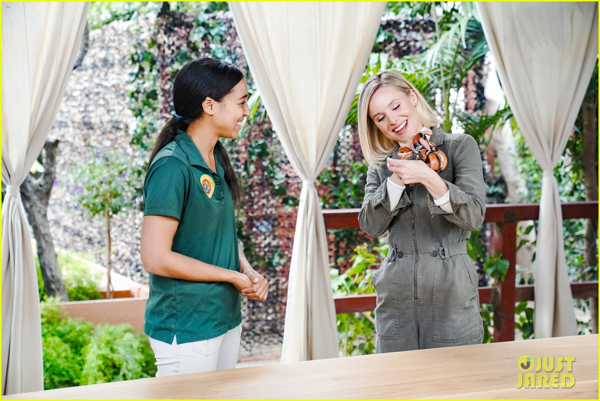 kristen bell reunites with a sloth on ellen series after her viral freak out 05