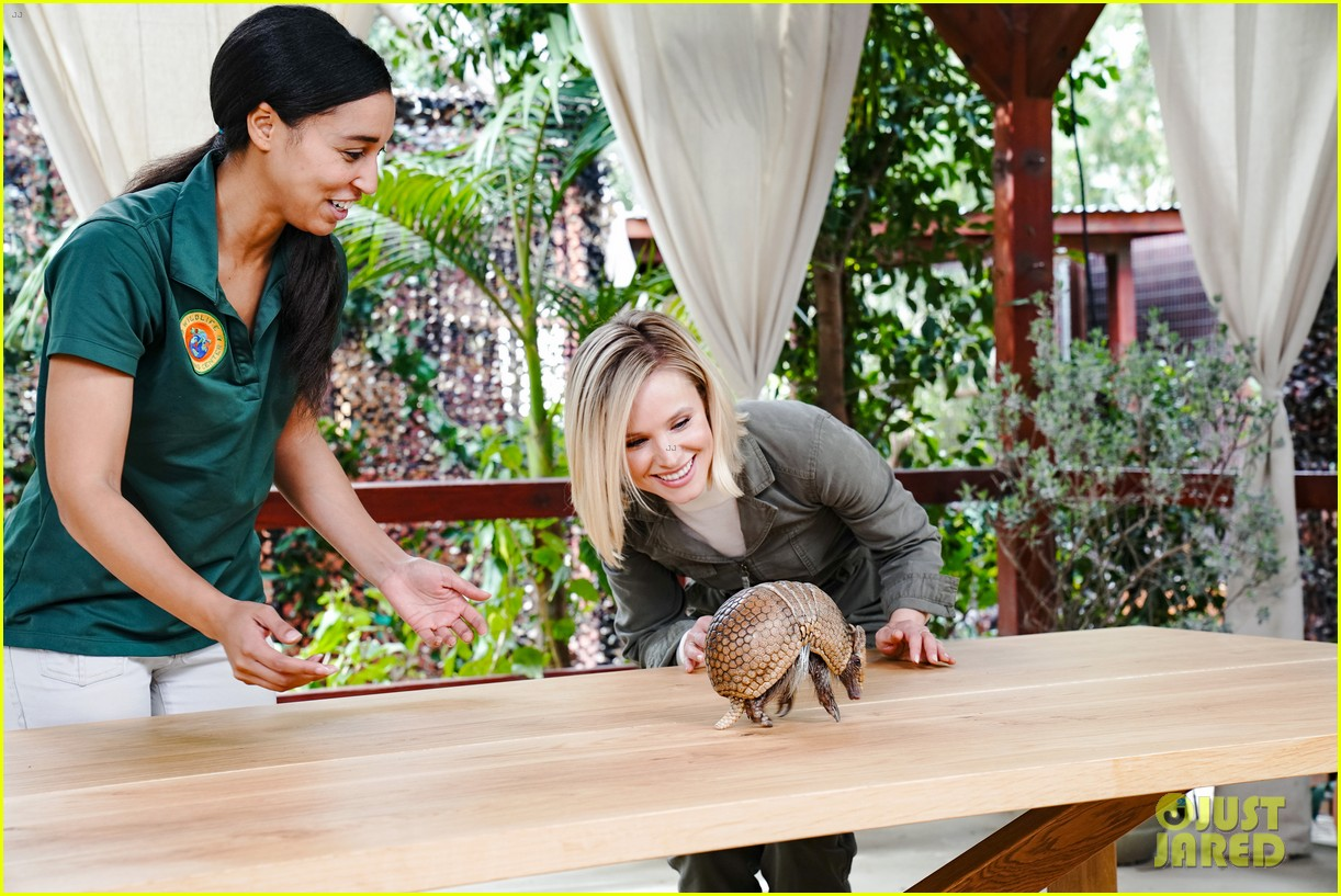 kristen bell reunites with a sloth on ellen series after her viral freak out 07