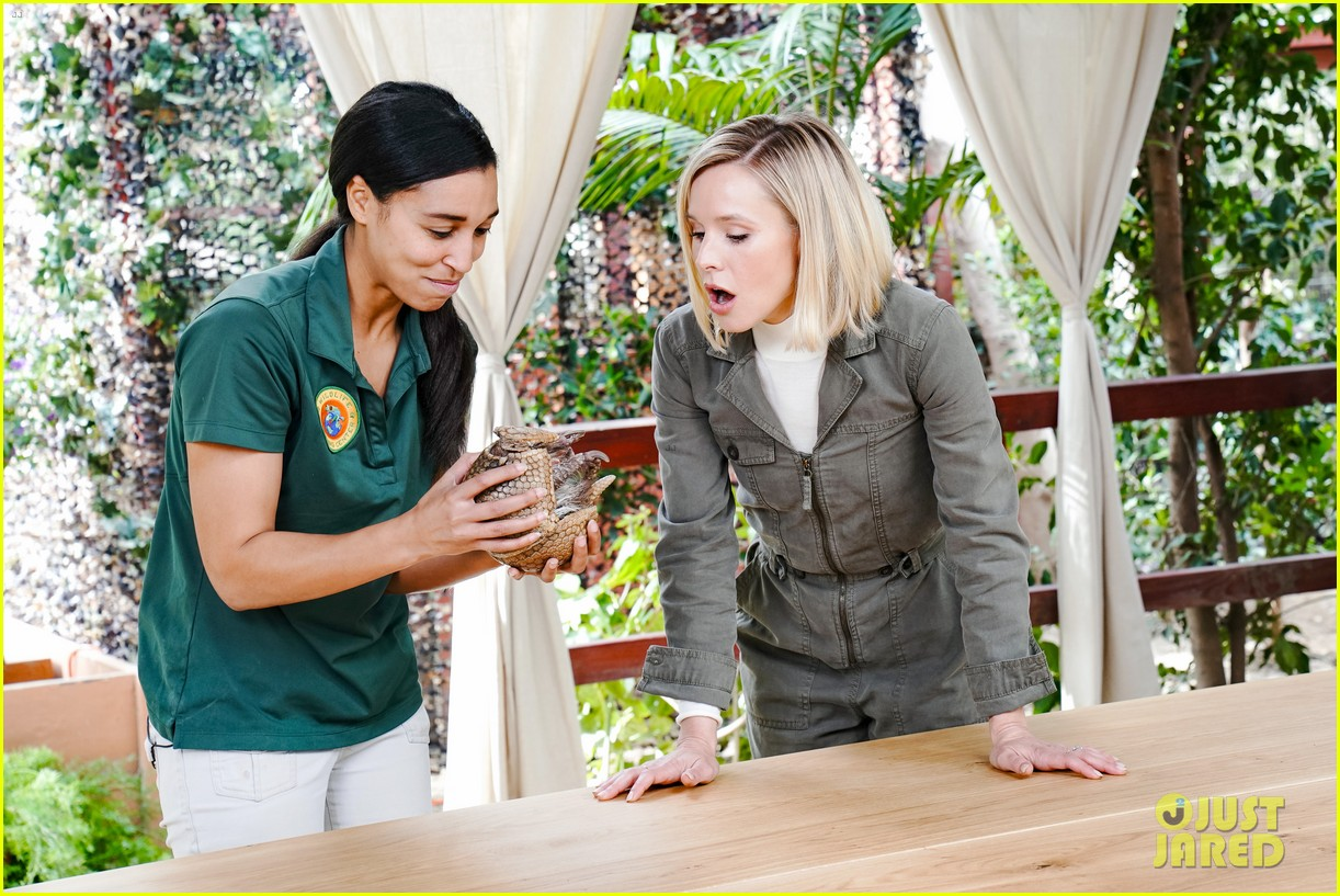 kristen bell reunites with a sloth on ellen series after her viral freak out 08