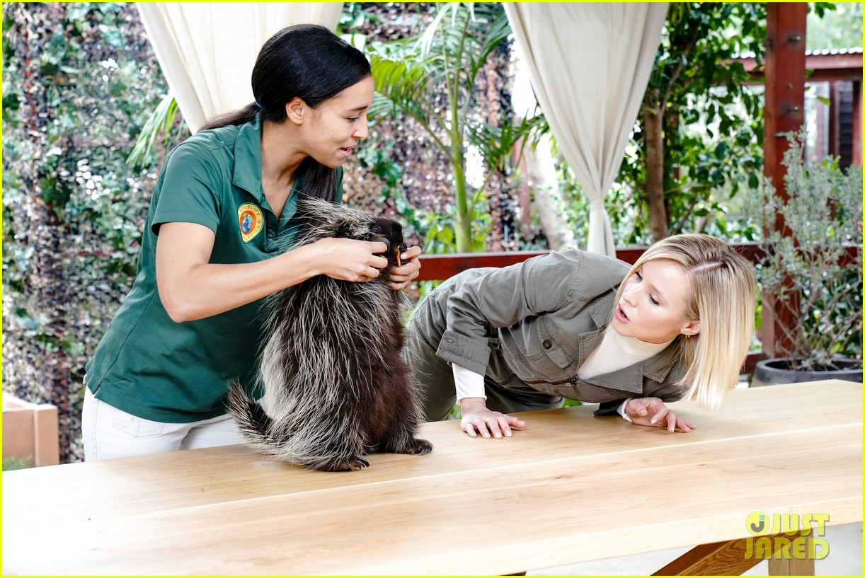 kristen bell reunites with a sloth on ellen series after her viral freak out 09