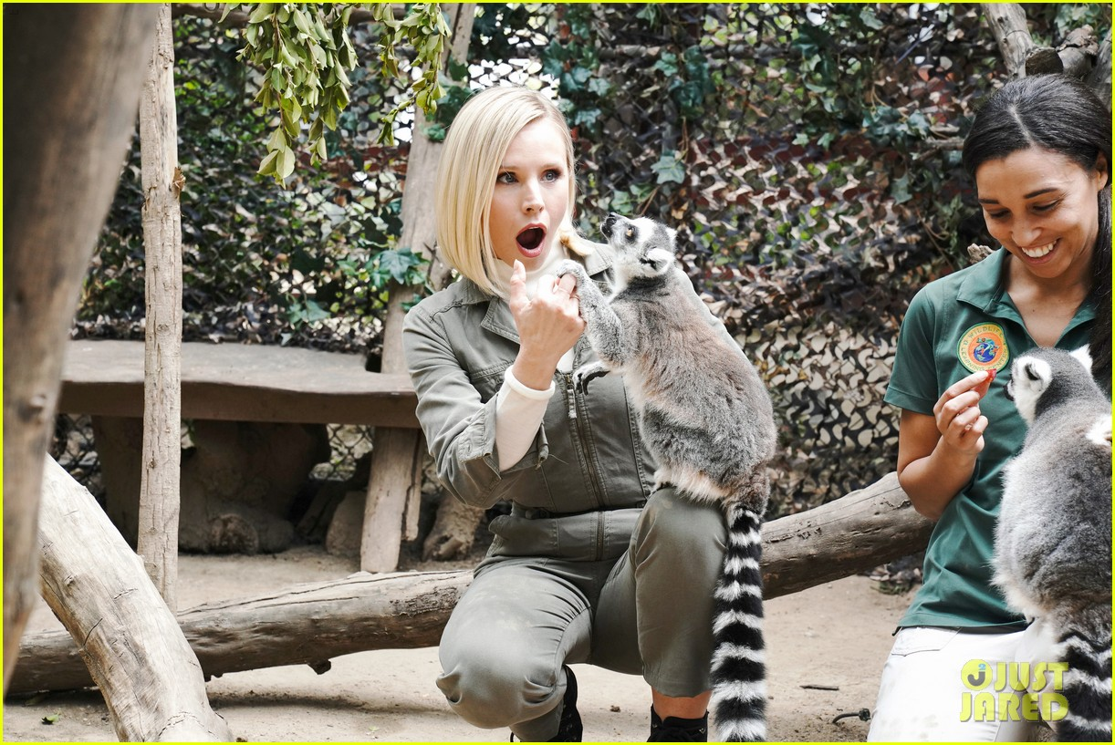kristen bell reunites with a sloth on ellen series after her viral freak out 15