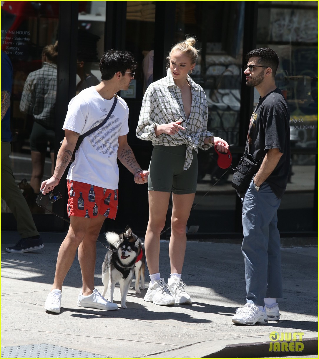 joe jonas sophie turner take their dogs for a walk in nyc 08