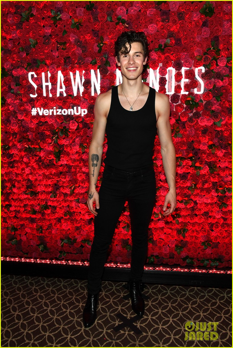 shawn mendes bares muscles at concert 054291976