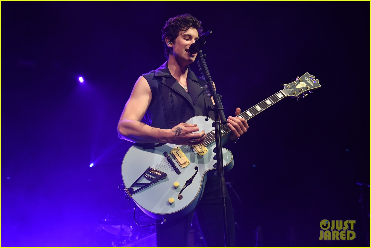 shawn mendes bares muscles at concert 064291977