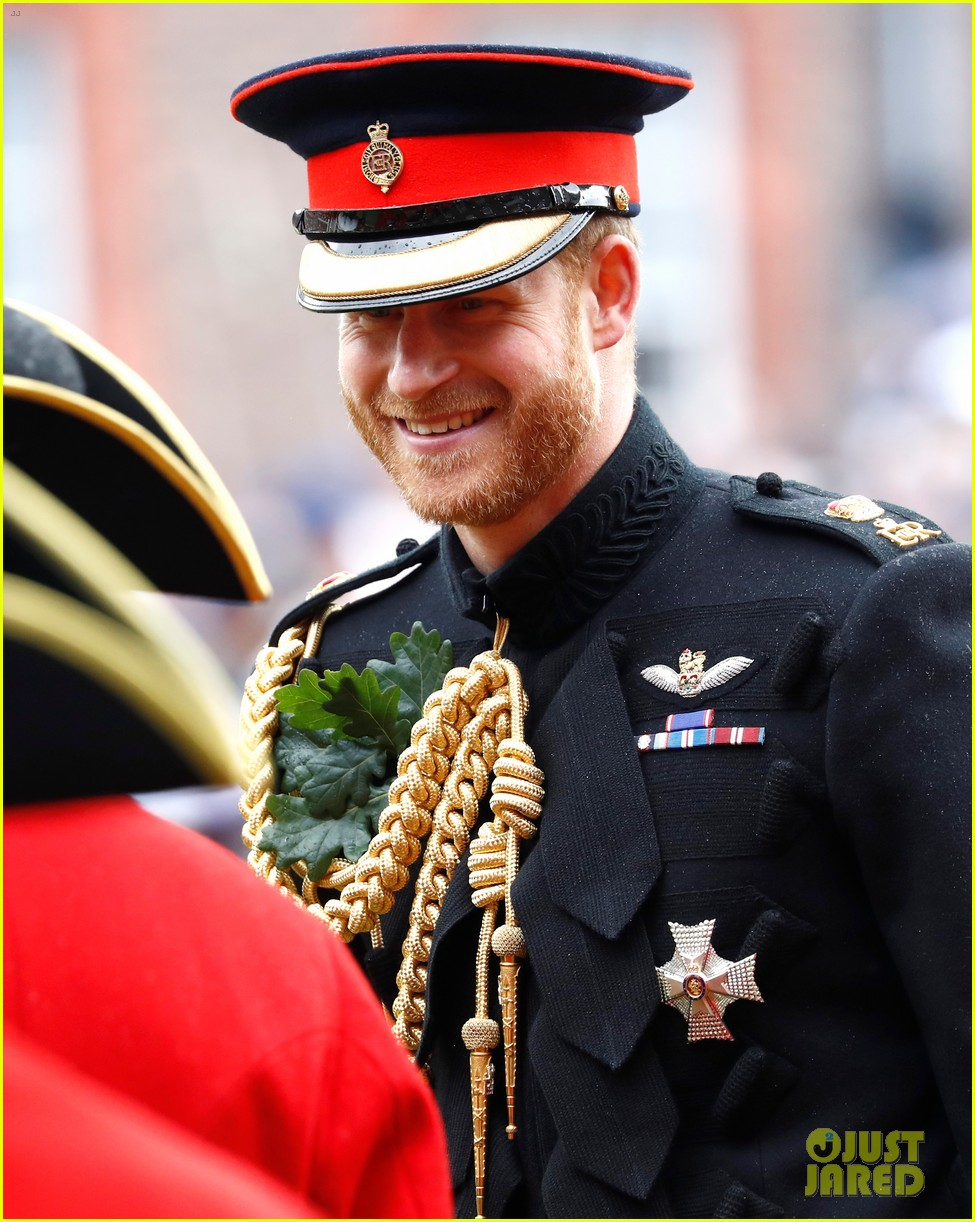 prince harry prince william step out solo for d day royal duties 01