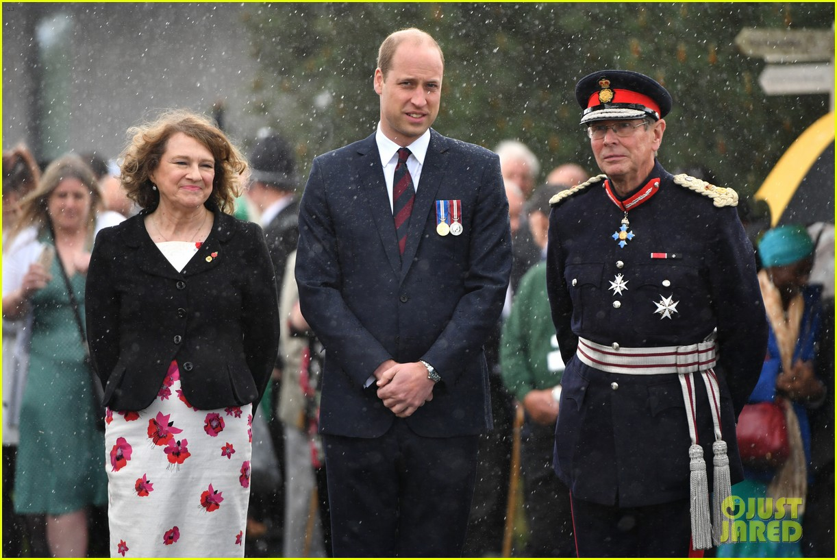 prince harry prince william step out solo for d day royal duties 03