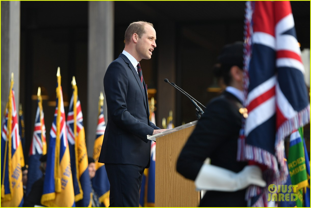 prince harry prince william step out solo for d day royal duties 07