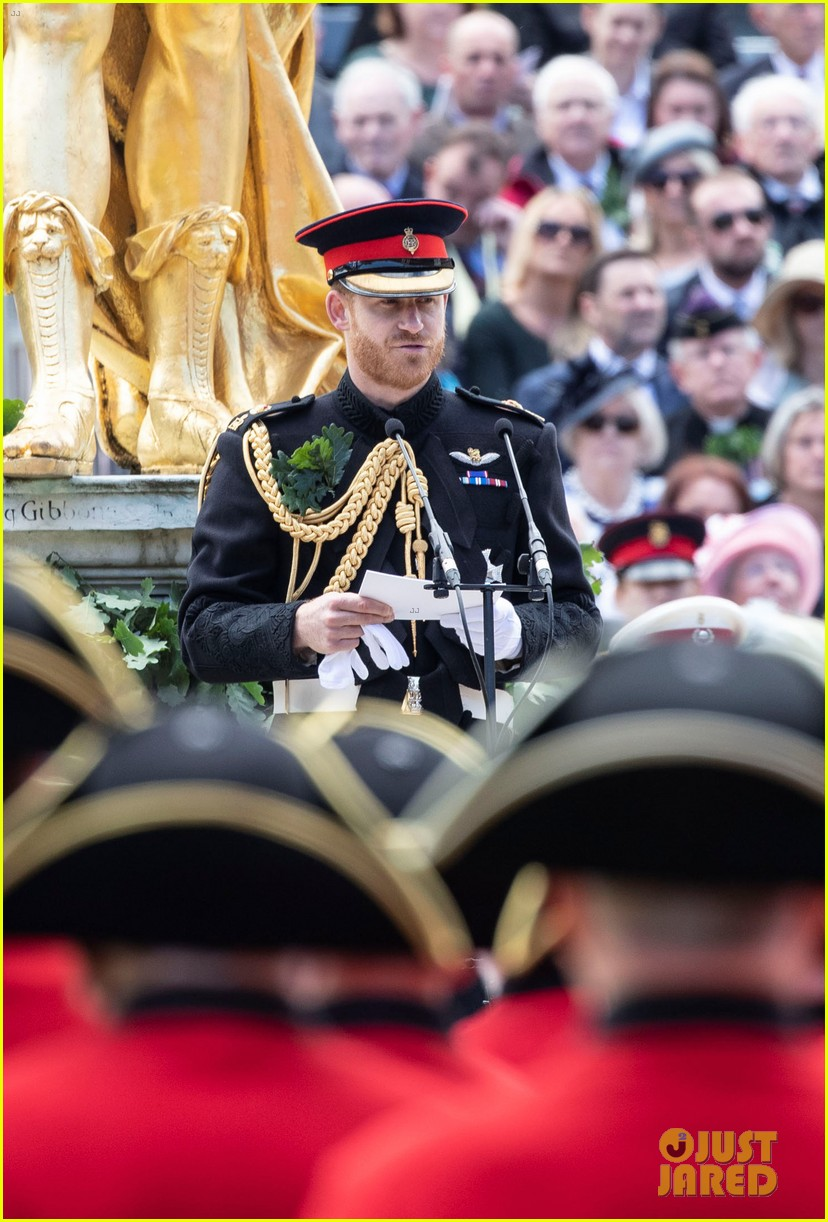 prince harry prince william step out solo for d day royal duties 20