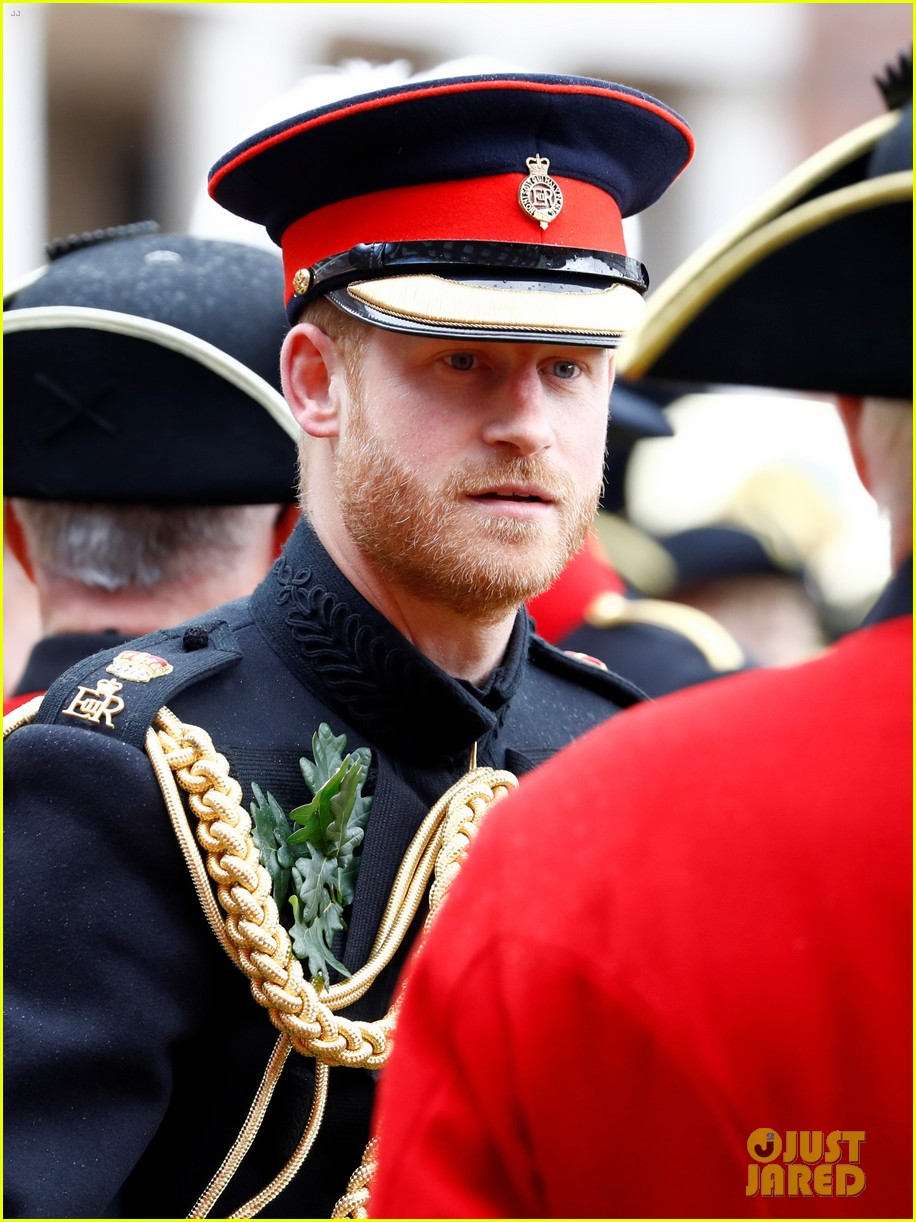 prince harry prince william step out solo for d day royal duties 23