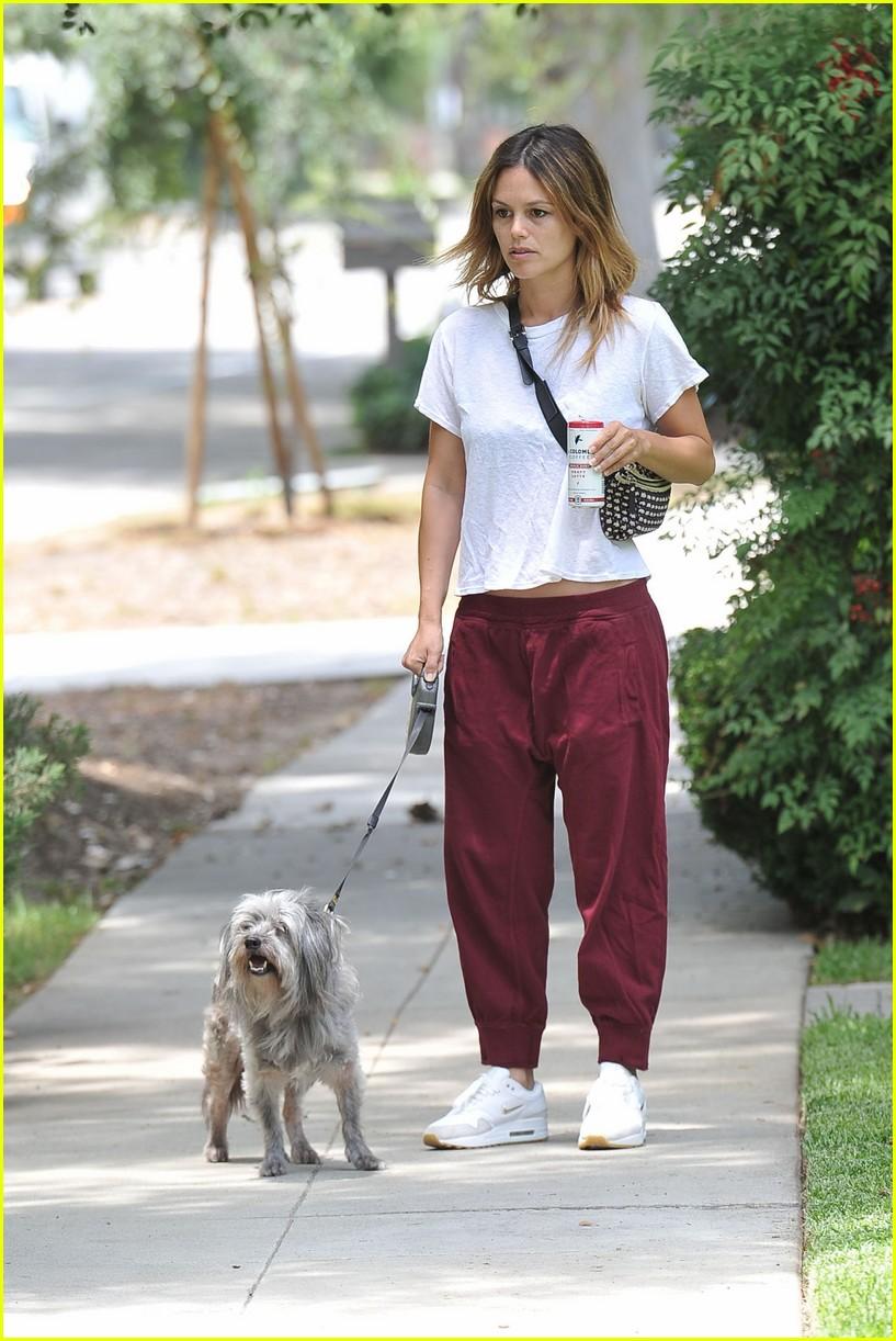 rachel bilson walks her dog 014319825