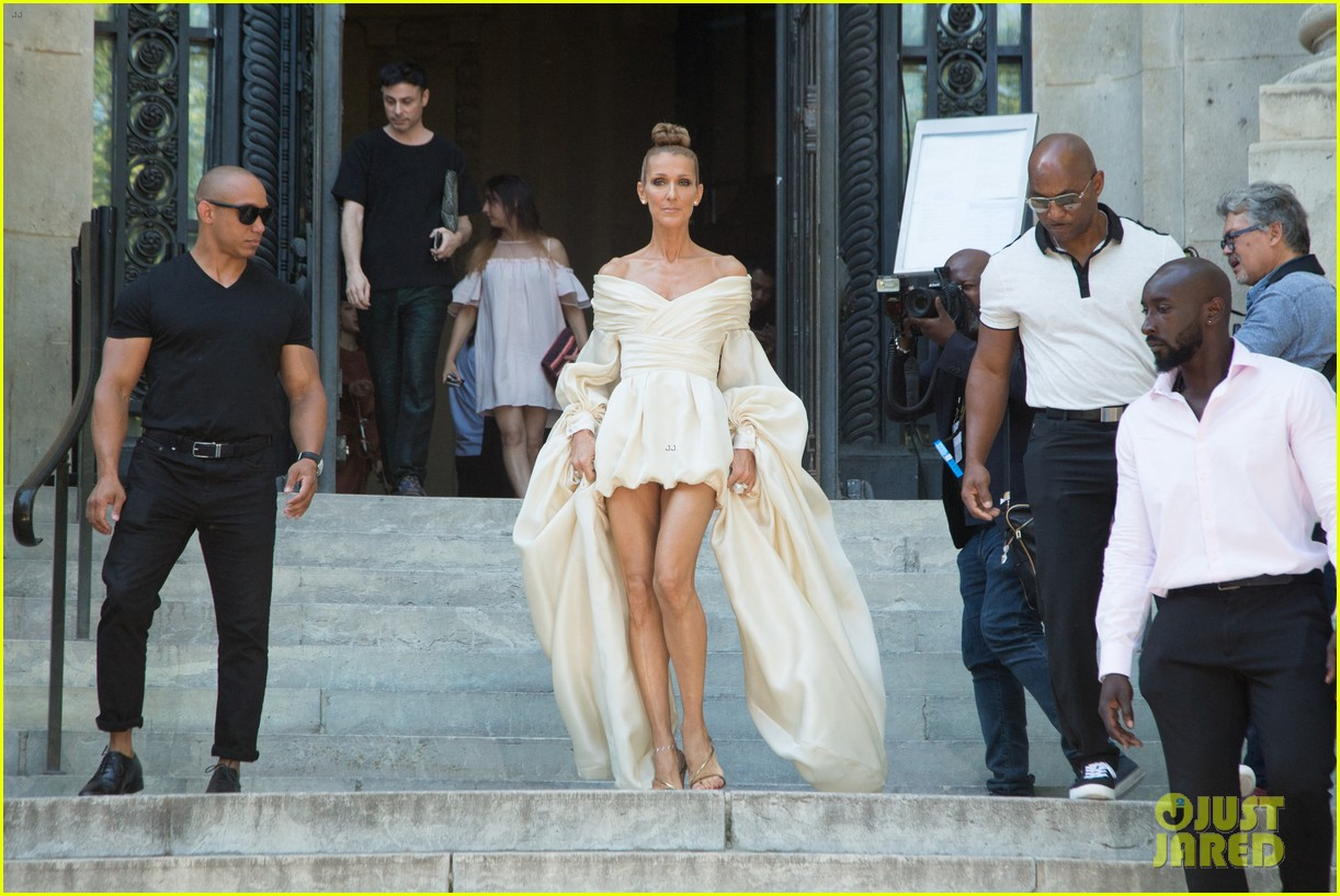 most popular buy good sold worldwide Celine Dion Is Show-Stopping at Alexandre Vauthier Paris ...