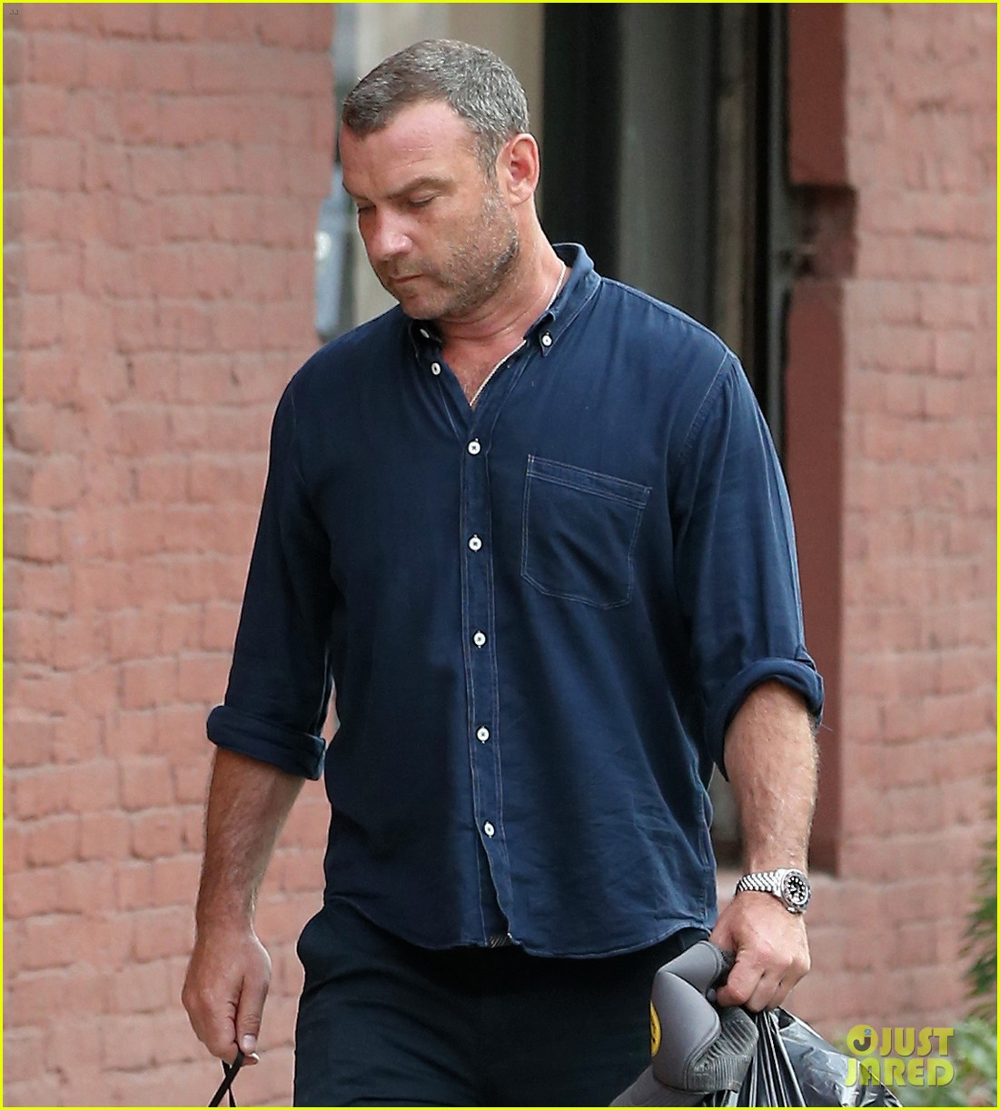Liev Schreiber Takes His Cute Dog for a Walk in NYC: Photo ...
