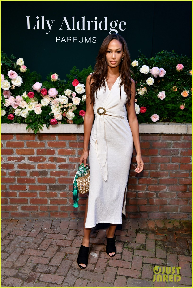 lily aldridge supported model friends perfume nyfw event 084348807