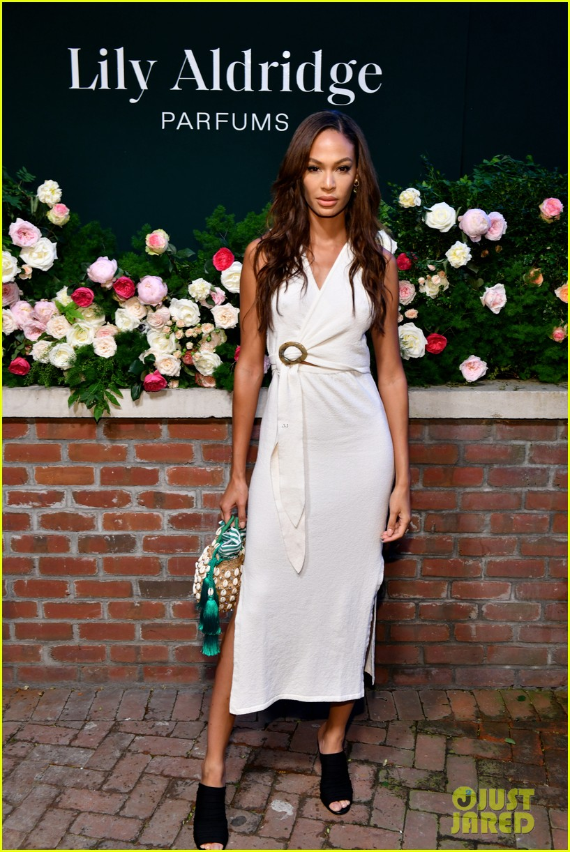 lily aldridge supported model friends perfume nyfw event 174348816