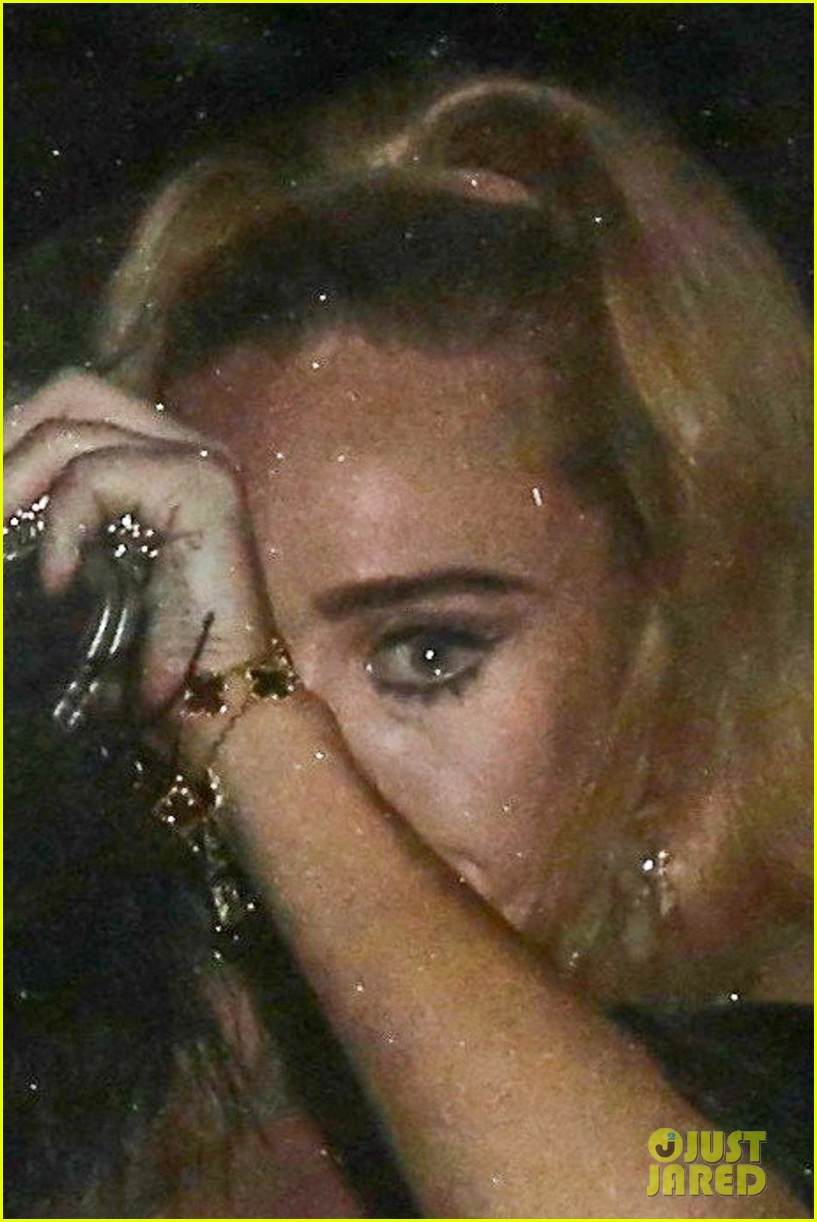 Adele Reacts to Rumors of Crying at Drake's Birthday Party