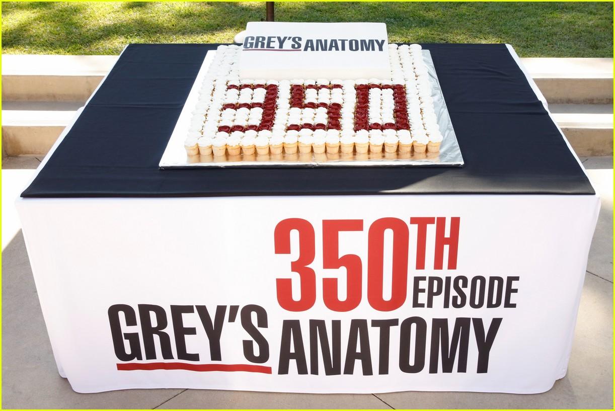 greys anatomy 350th episode 024371944