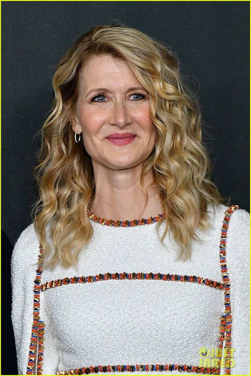 laura dern honored at moma event 024387281