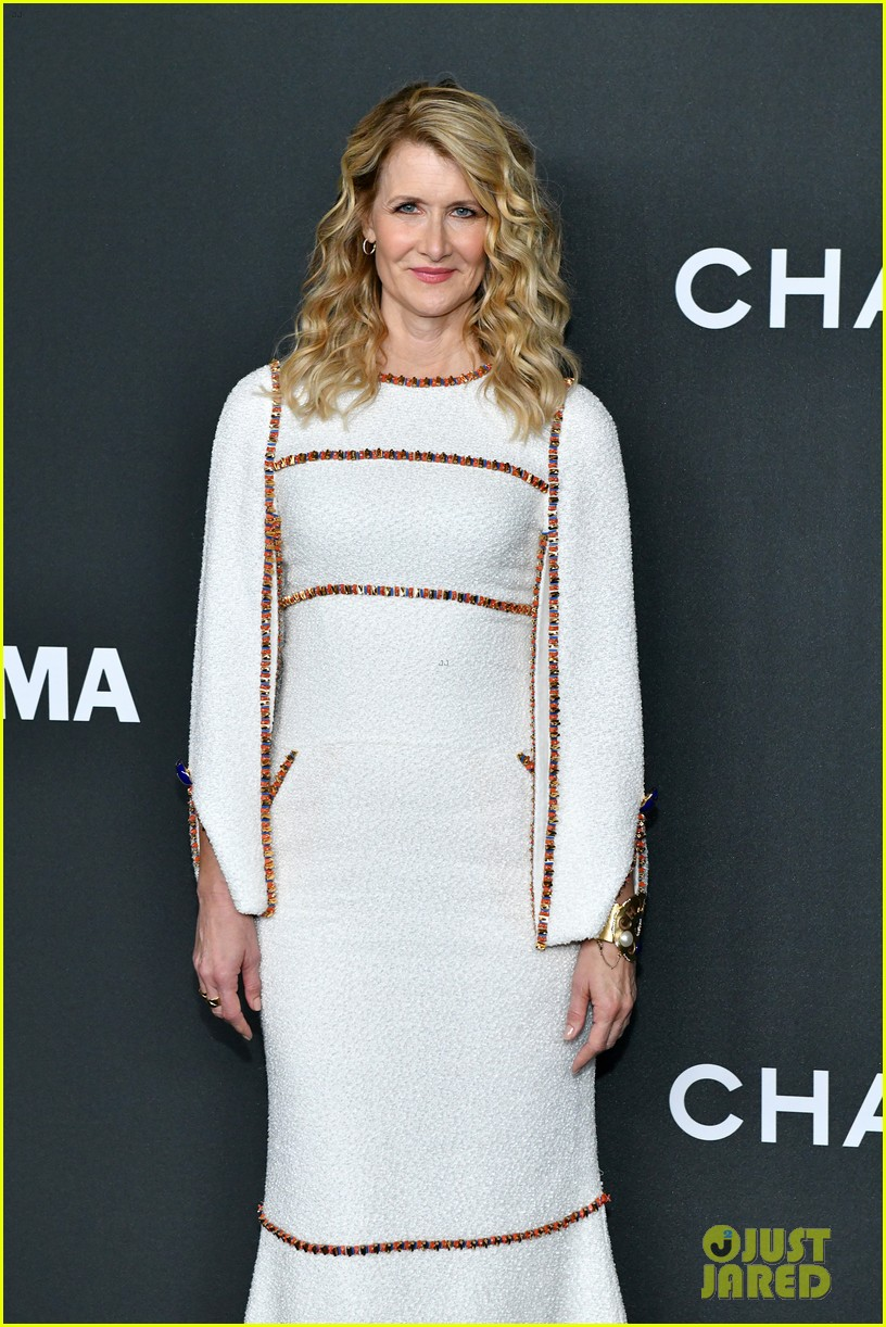 laura dern honored at moma event 104387289