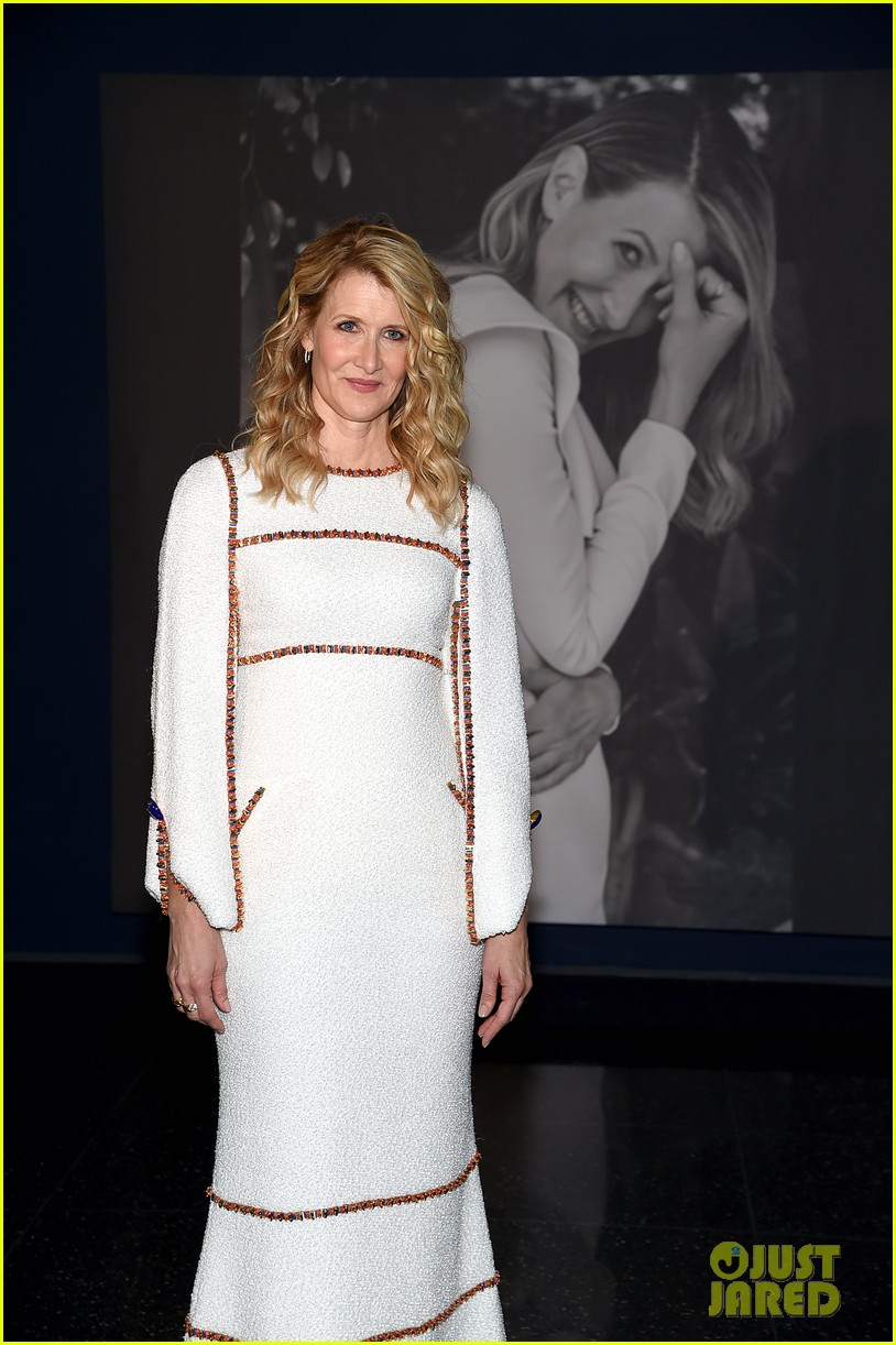 laura dern honored at moma event 384387317