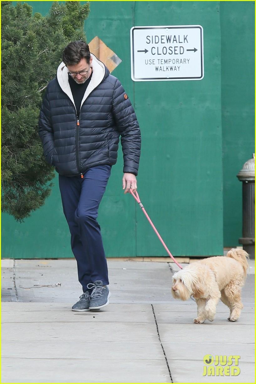 hugh jackman christmas day dog walk 034406871