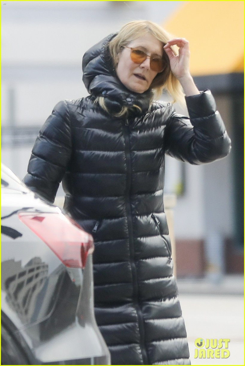 laura dern buys flowers during outing 024450299