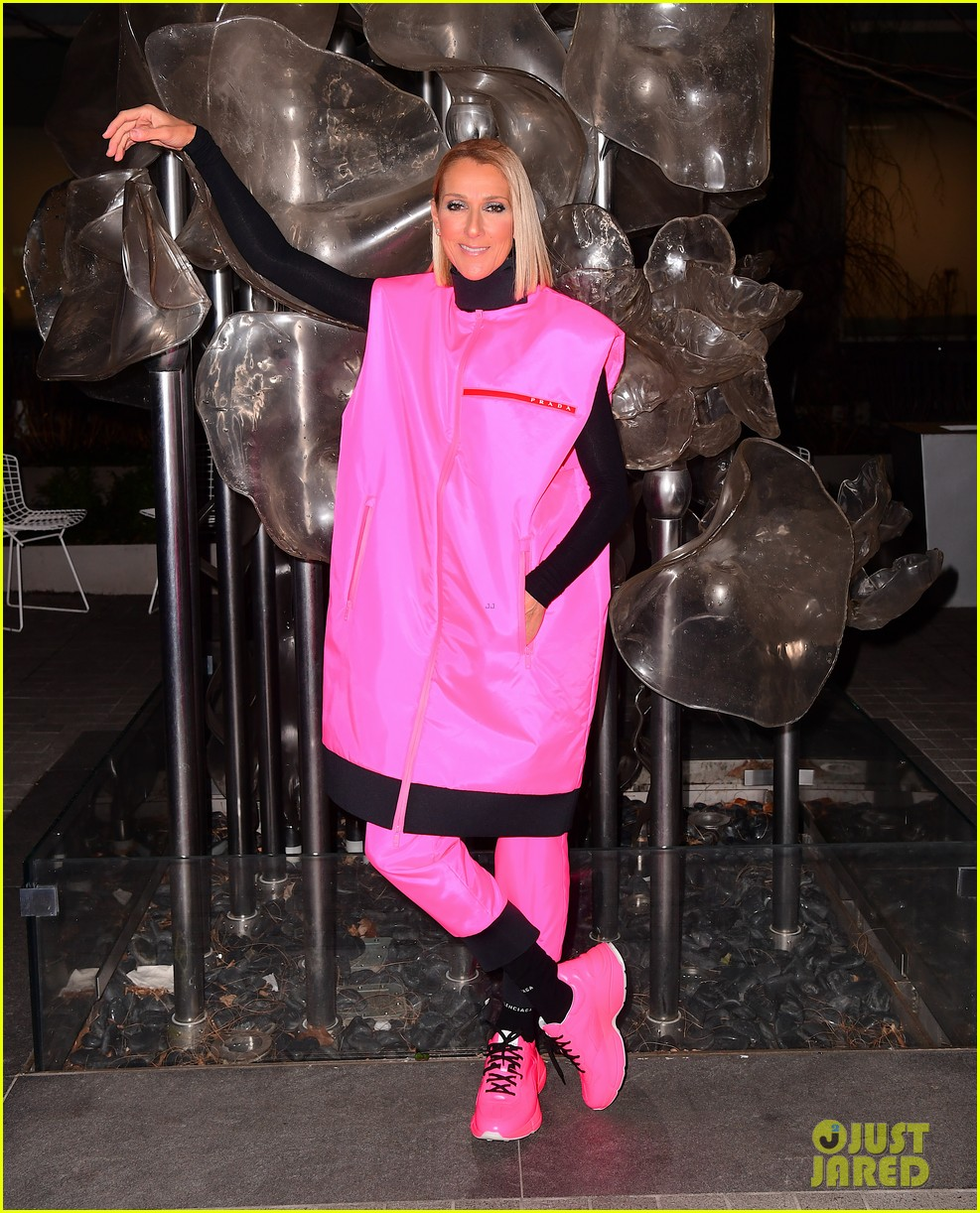 celine dion pink prada outfit final brooklyn show 014446752