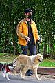 joe jonas sophie turner monday dog walk 13