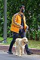 joe jonas sophie turner monday dog walk 25