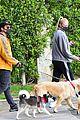 joe jonas sophie turner monday dog walk 45
