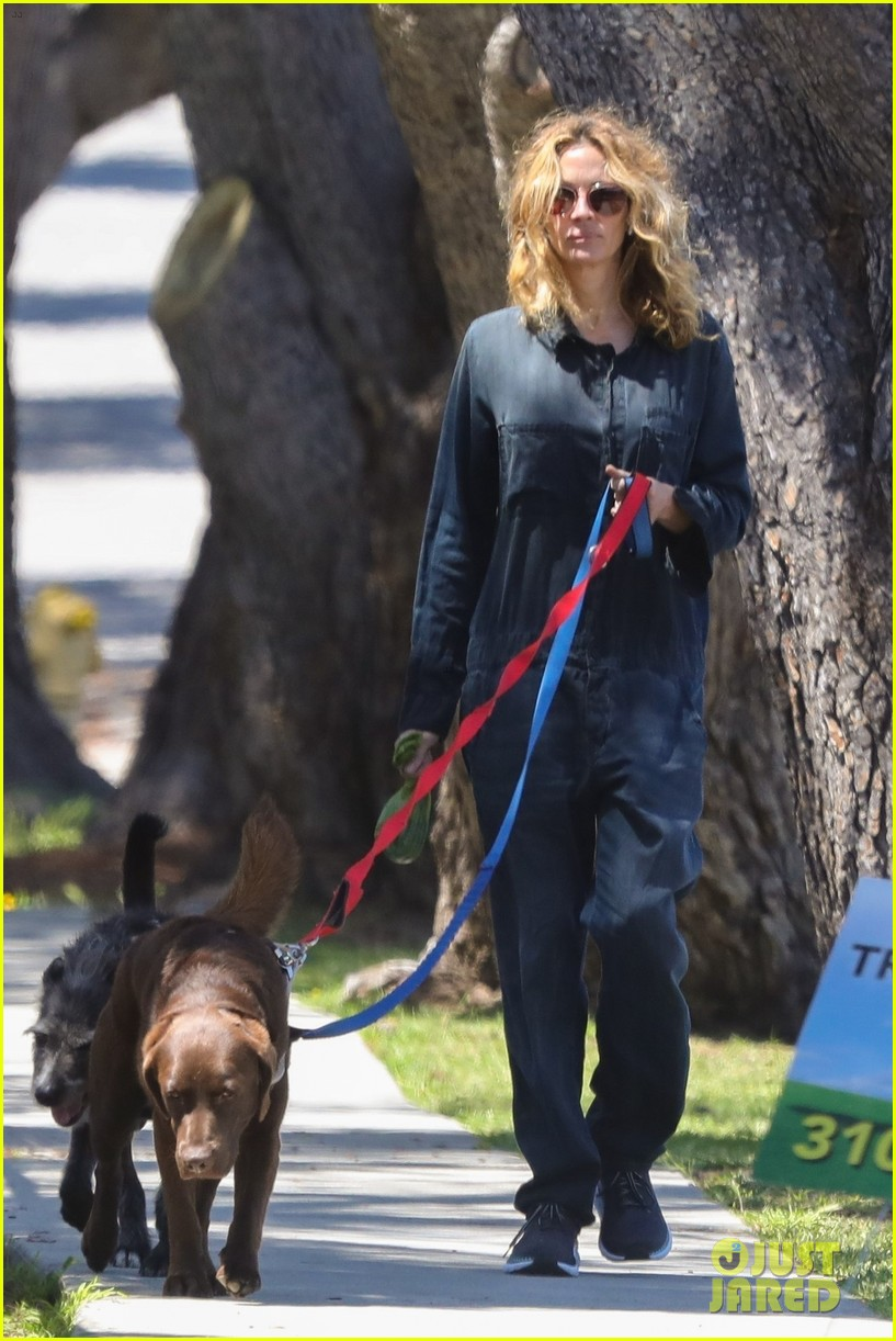 julia roberts walks dogs fab hair 044455581