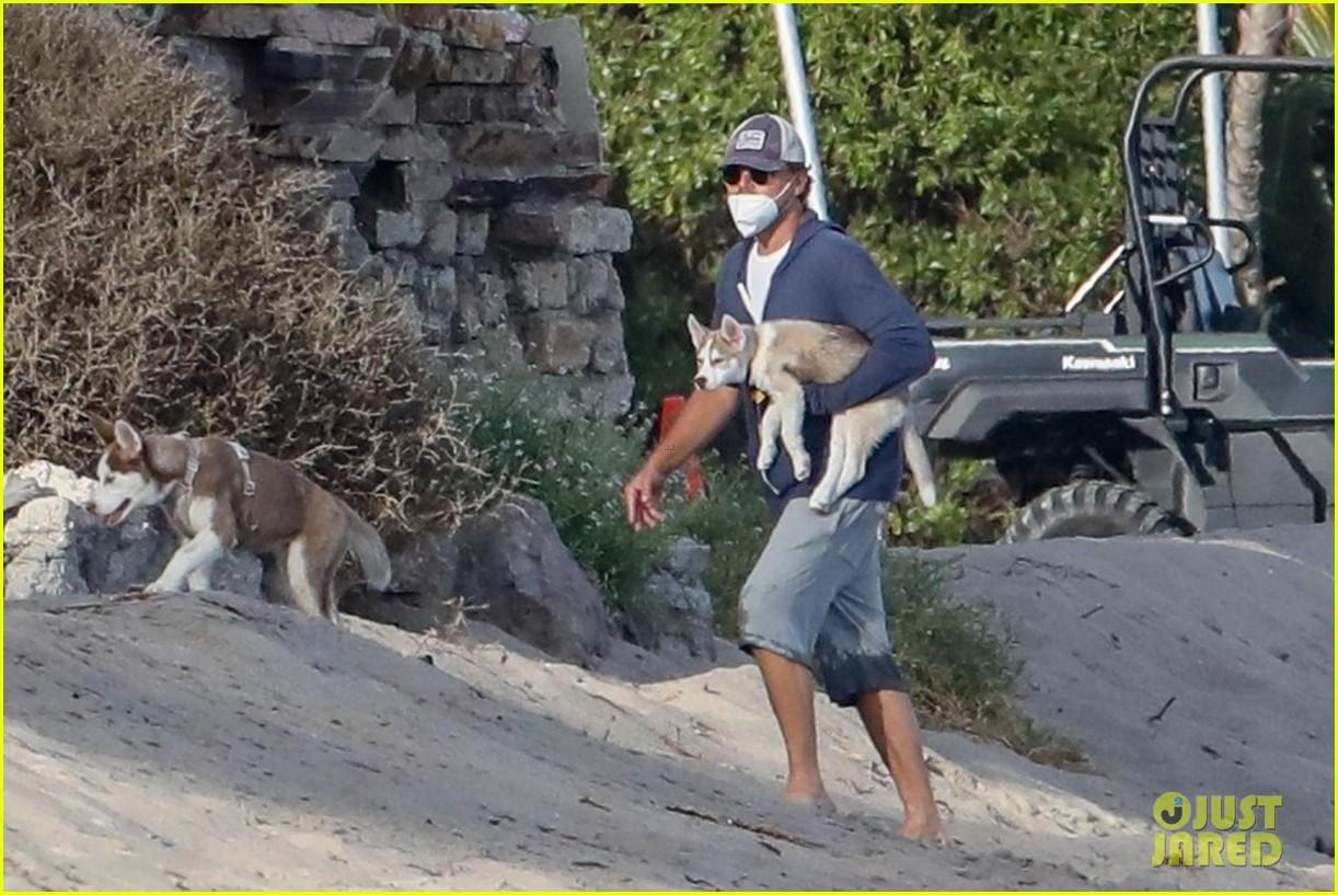 leo dicaprio jack jill huskies walk beach 014456080